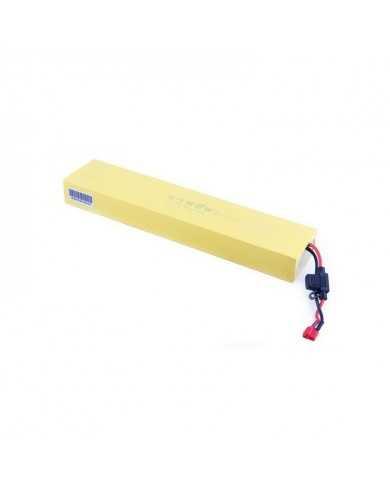 Batterie Lithium 33V 6.5Ah - Etwow